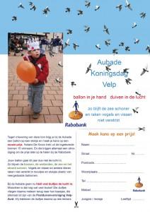 alternatief-ballonnenwedstrijd